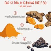 Turmeric Forte Organic - Curcuma+curcumin+piperine, 160 capsules, 465 mg, free from additives